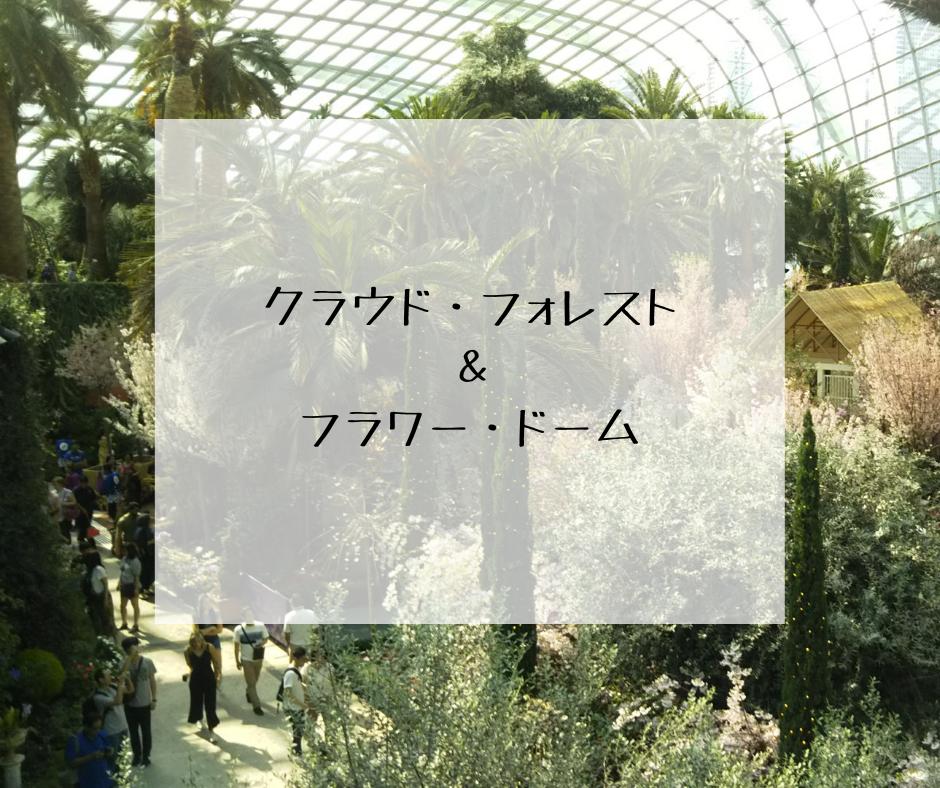 涼しい室内で植物鑑賞が楽しめる*クラウド・フォレスト&フラワー・ドーム